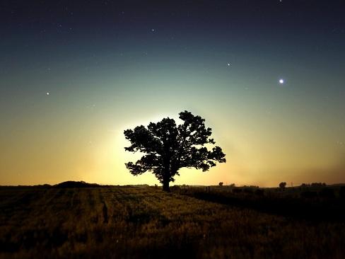 Una noche en el campo
