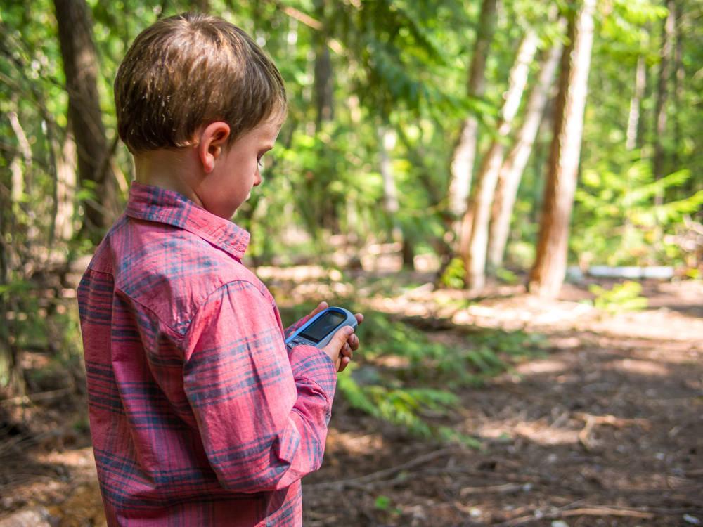 Actividades para hacer con niños en un Camping