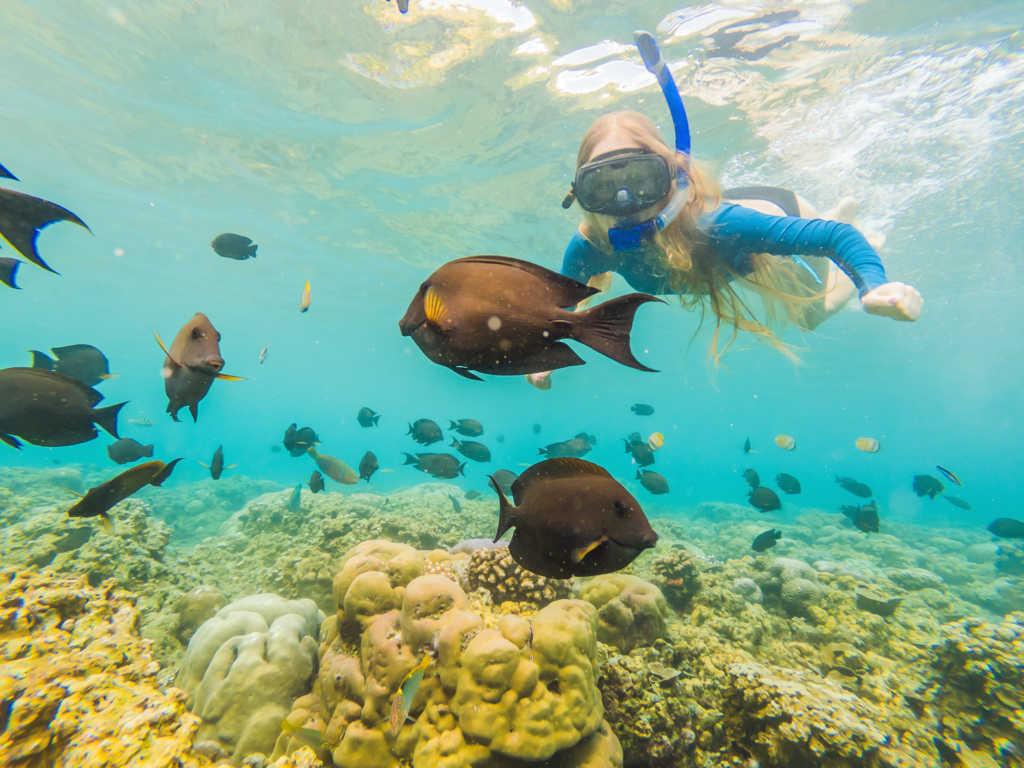 Los viajes de buceo no son caros